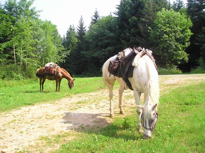 3 semaines dans le Jura / Doubs / Ain 09-sor10