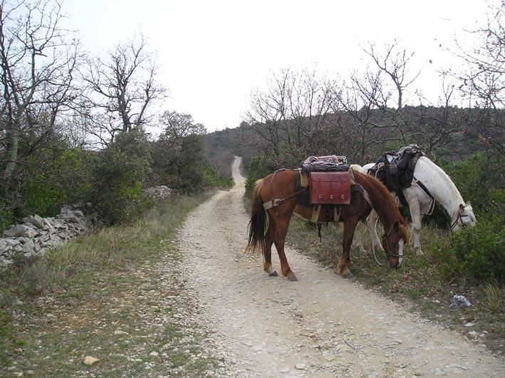 Une semaine en Ardèche - Spécial météo 11-rou10