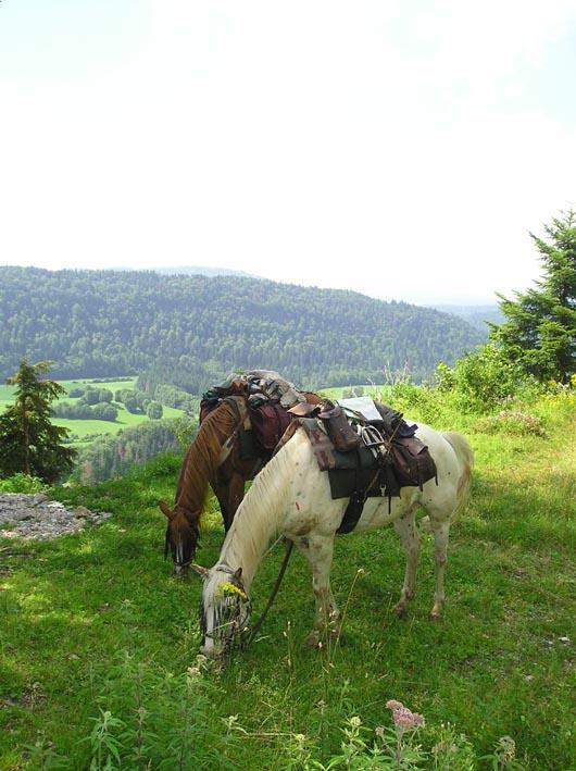 3 semaines dans le Jura / Doubs / Ain 12-jur10