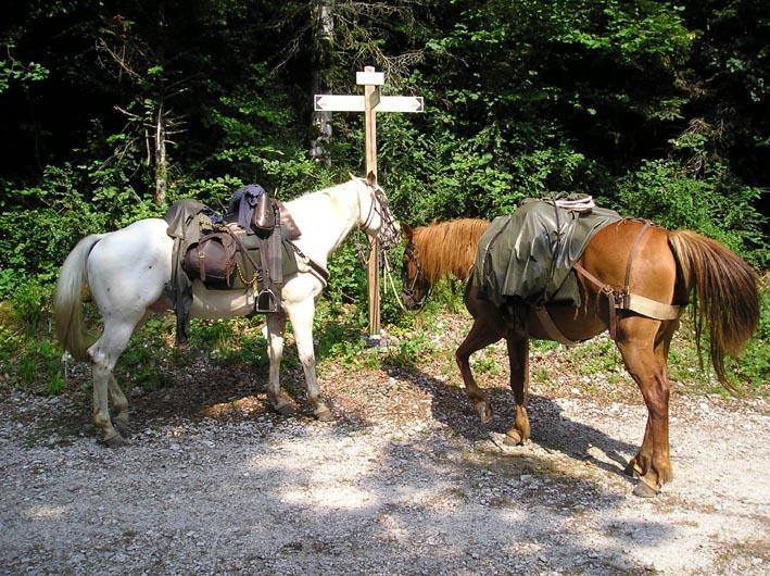 3 semaines dans le Jura / Doubs / Ain 15-pan10