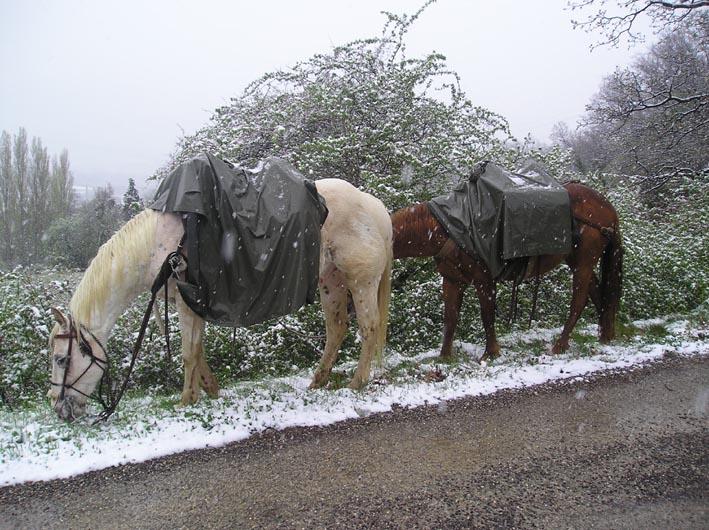 Une semaine en Ardèche - Spécial météo 18-nei10