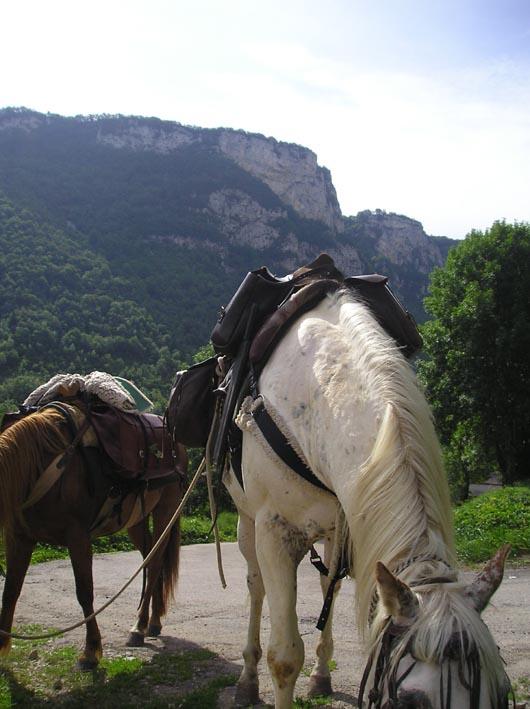 3 semaines dans le Jura / Doubs / Ain 21-via10