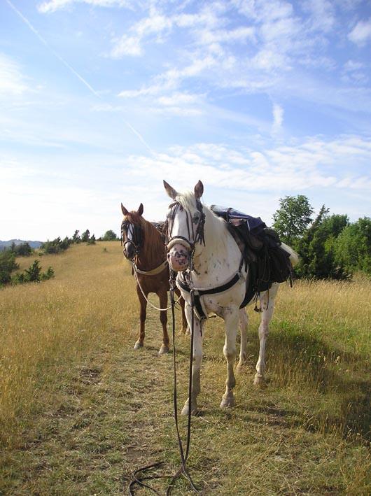 3 semaines dans le Jura / Doubs / Ain 23-ain10