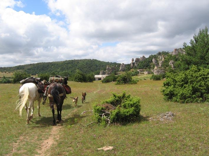 1 mois dans la Lozère (et Gard, Aveyron, etc...) Lozere13