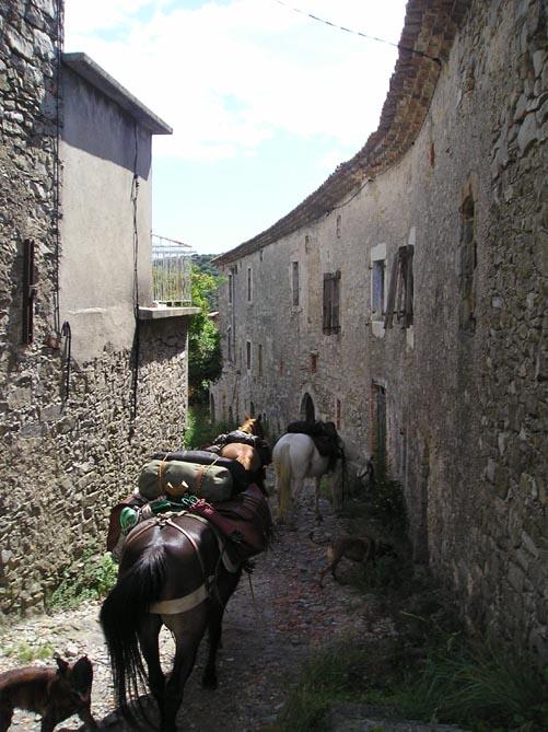 1 mois dans la Lozère (et Gard, Aveyron, etc...) P1010010