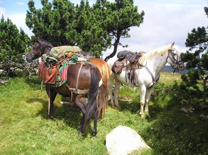 1 mois dans la Lozère (et Gard, Aveyron, etc...) P1010014