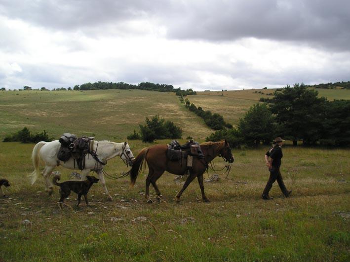 1 mois dans la Lozère (et Gard, Aveyron, etc...) P1010016