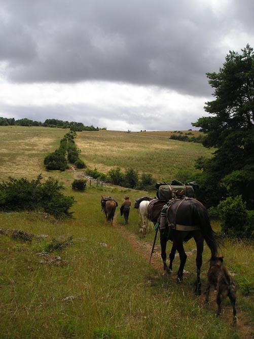 1 mois dans la Lozère (et Gard, Aveyron, etc...) P1010017