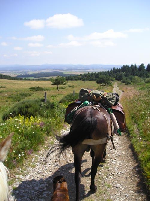1 mois dans la Lozère (et Gard, Aveyron, etc...) P1010021
