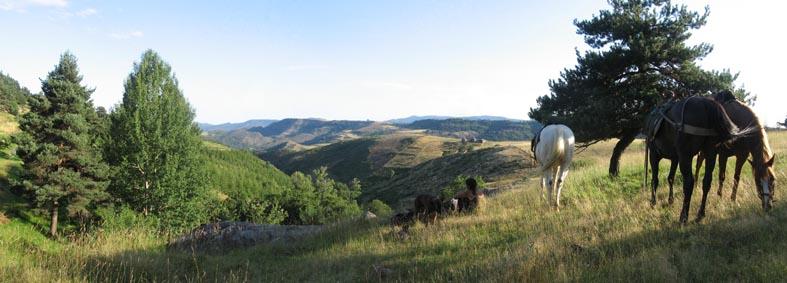 1 mois dans la Lozère (et Gard, Aveyron, etc...) Pano110