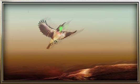 Hummingbird always reminds me to dance with joy, regardless Hummin10