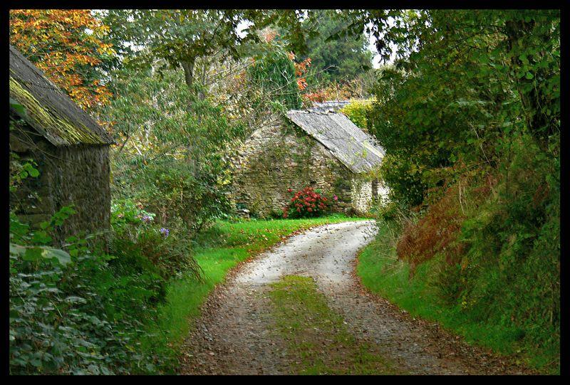couleurs d automne  dans les monts d arree Mt_arr10