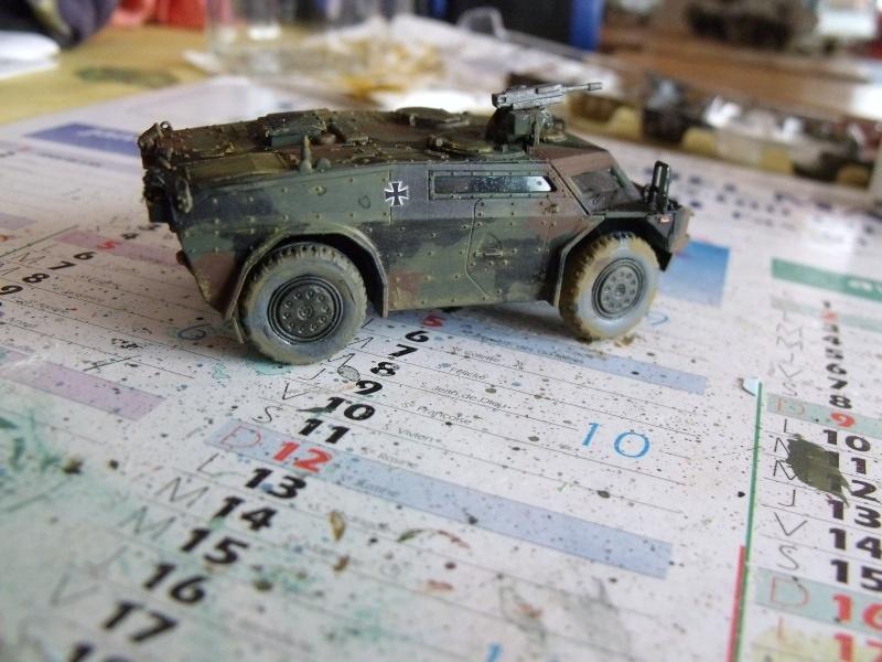"""SLT50-3 """" ELEFANT """" ET Sa aNH.52 T , avec le Panzerhaubitze 2000 et le Fennek REVELL 1/72 - Page 2 Dscf1616"""