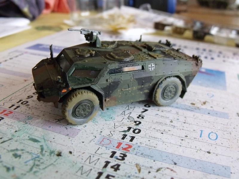 """SLT50-3 """" ELEFANT """" ET Sa aNH.52 T , avec le Panzerhaubitze 2000 et le Fennek REVELL 1/72 - Page 2 Dscf1617"""