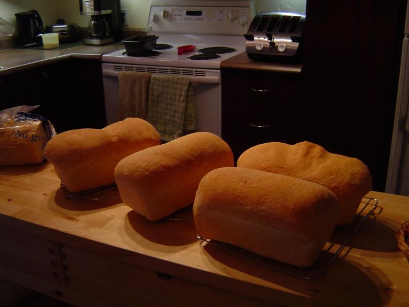 Recette de levain pour le pain - Page 2 Revate15
