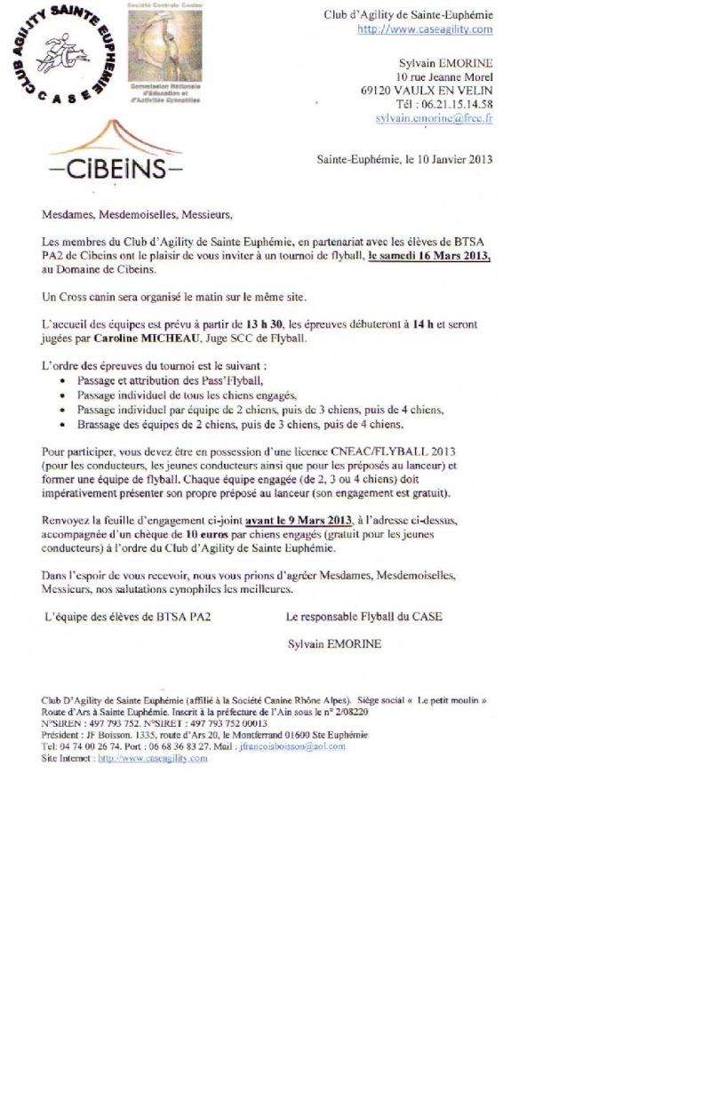 TOURNOI A CIBEINS Flybal17