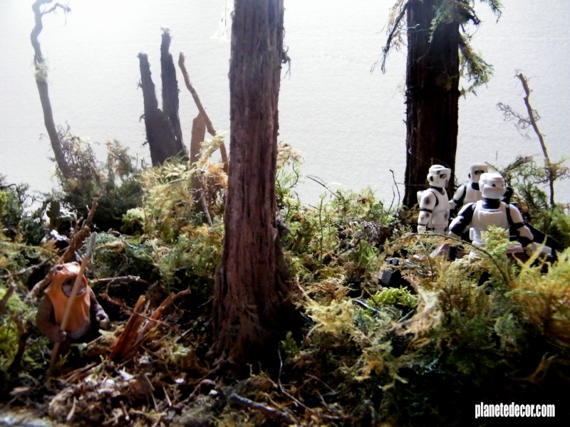 mes decors pour figurines starwars new décor Hasbro podracer - Page 3 Endor_13