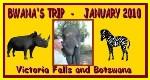 Bwana's Trips