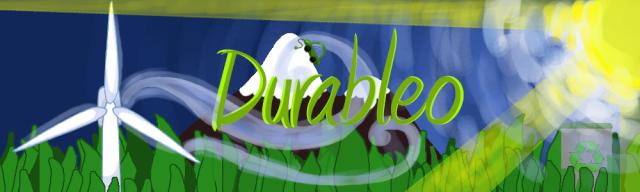 Rockette :) - Page 2 Durabl10