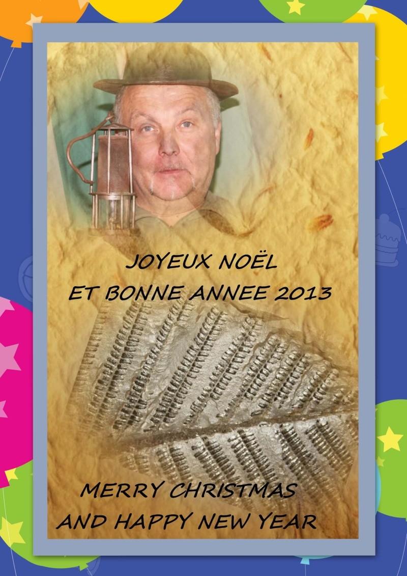 Joyeux noël et bonne fête de fin d 'année .....  Voeux_11