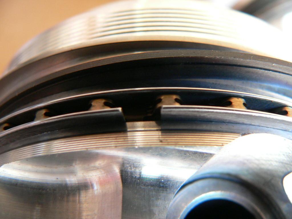 Segment racleur P1090710