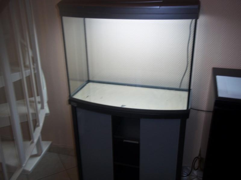 Nouveau Aquarium 130L et 60L spé crevettes 100_0627