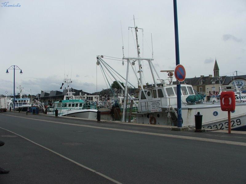 Port en Bessin - 14- Juille39