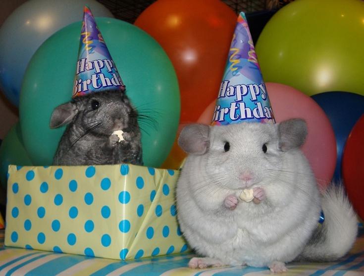 Joyeux anniversaire daniel Image110