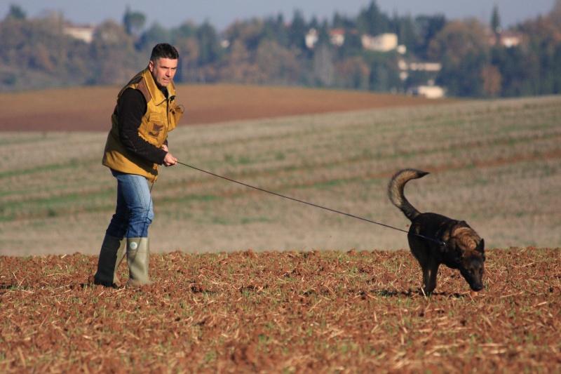 Initiation au pistage 12 décembre 2009 Img_5911