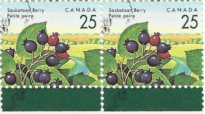 Briefmarken - Briefmarken mit durchlaufenden Markenbild Durchl15