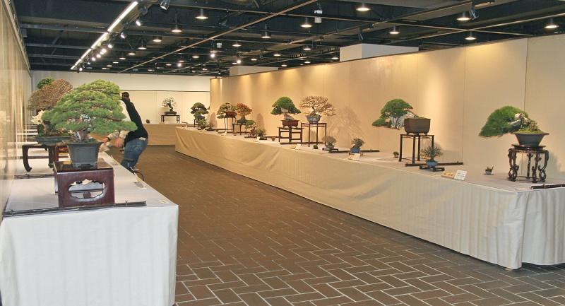 2013 87th KOKUFU BONSAI EXHIBITION Galler10