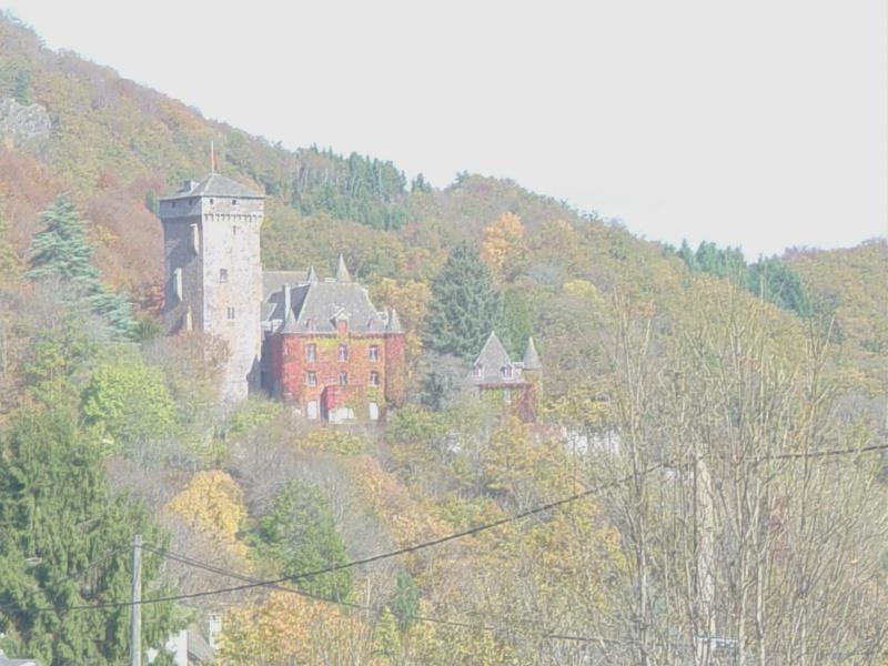 Chateaux du Cantal... Dsc00910