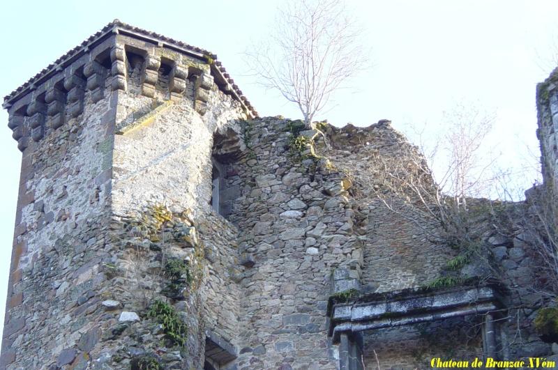 Chateaux du Cantal... Dsc01210