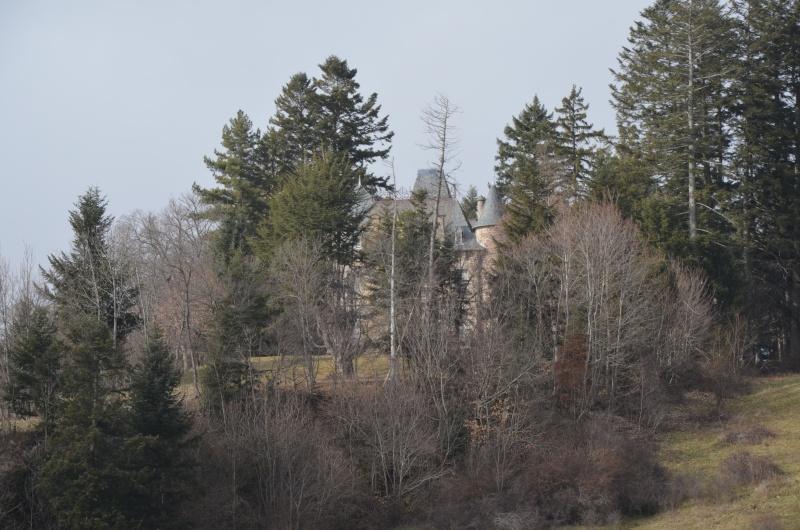 Chateaux du Cantal... Dsc_0314