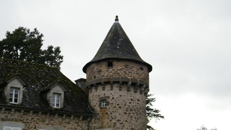 Chateaux du Cantal... Dscf0510