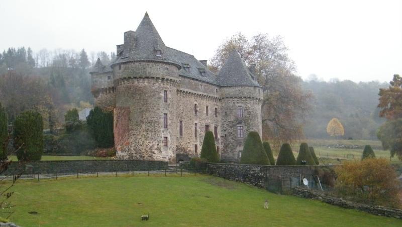 Chateaux du Cantal... Dscf0512