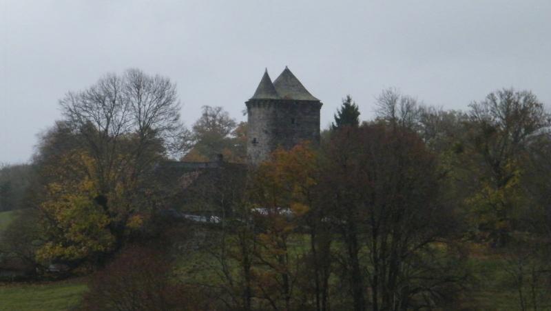 Chateaux du Cantal... Dscf0514