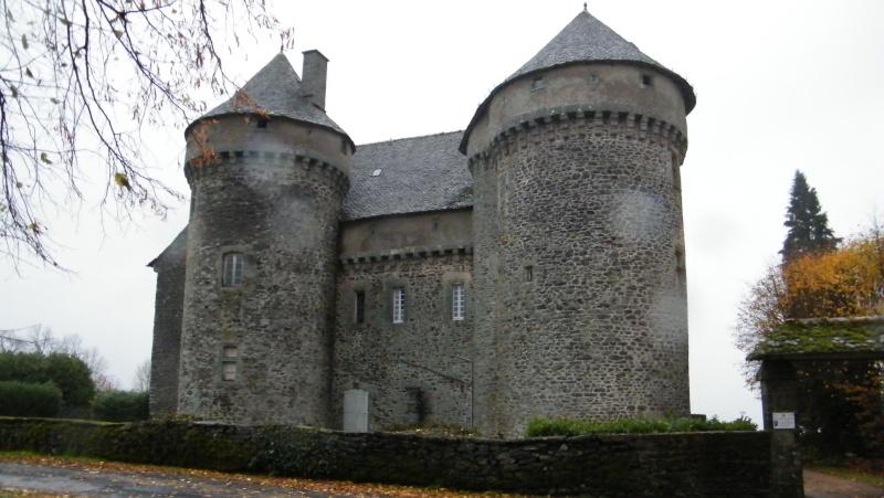 Chateaux du Cantal... Dscf0515