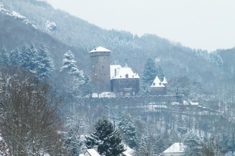 Chateaux du Cantal... Dscf1010