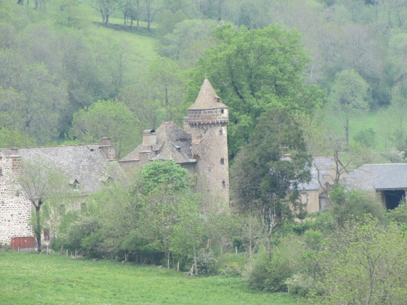 Chateaux du Cantal... Img_0410