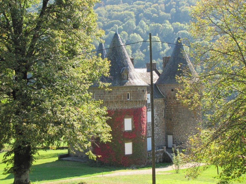 Chateaux du Cantal... Img_7411