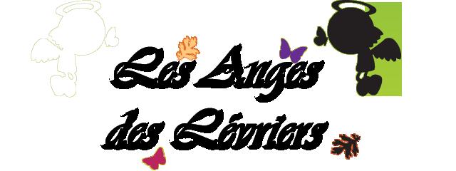 Les Anges des Lévriers