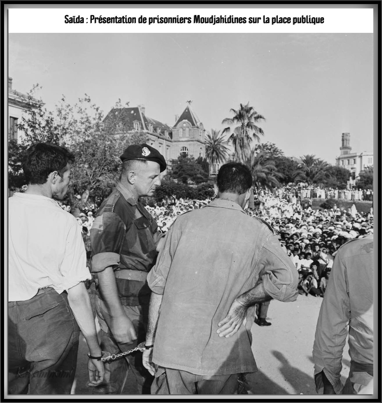 Saida la révolutionnaire Presen10