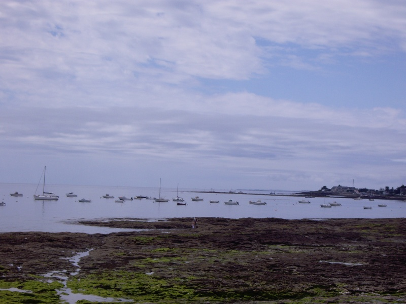 Le Morbihan Imgp2410