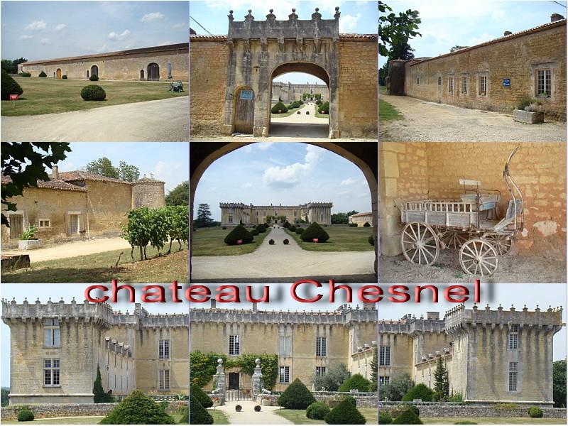 visite : 16 - Cherves-Richemont (cognac), chateau Chesnel - payant Chesne11