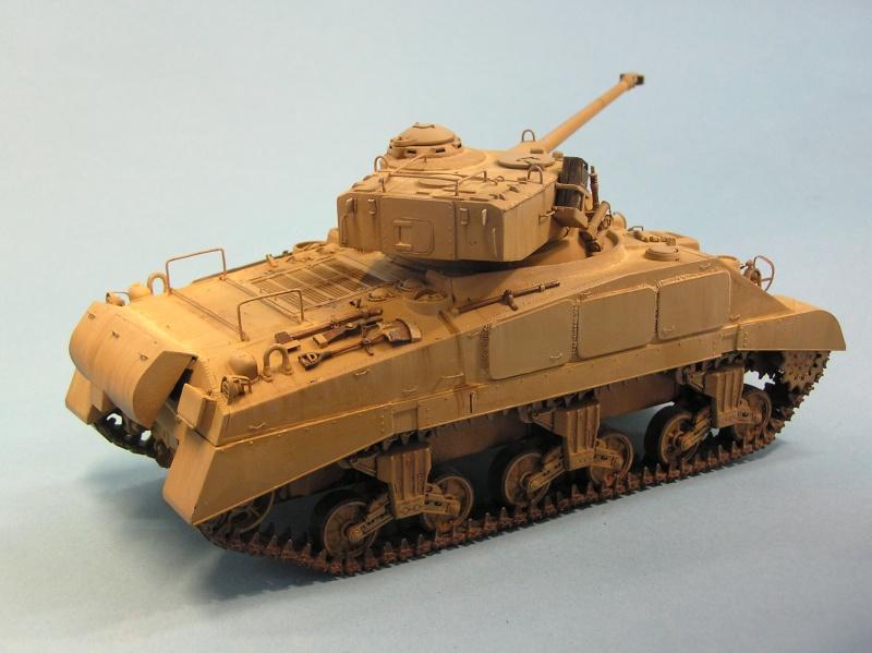 Sherman Alamein - (READY!!!!!!) - Page 5 P1010017