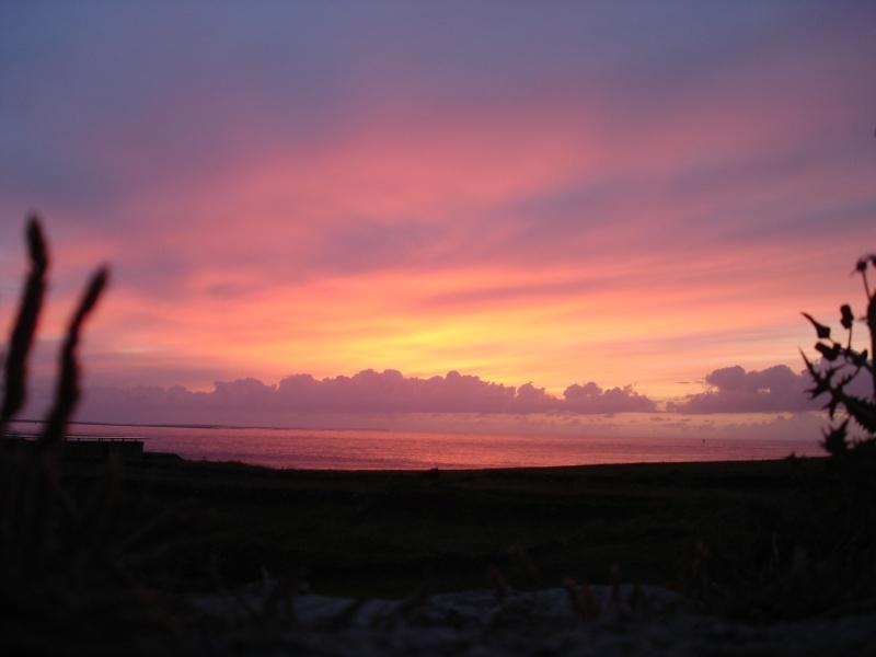 Vos plus beaux couchers de soleil  Dsc05710