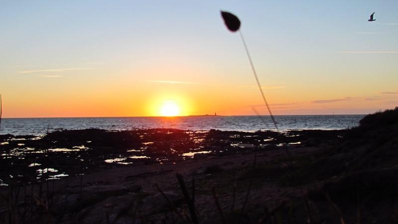 Vos plus beaux couchers de soleil  Img_0310