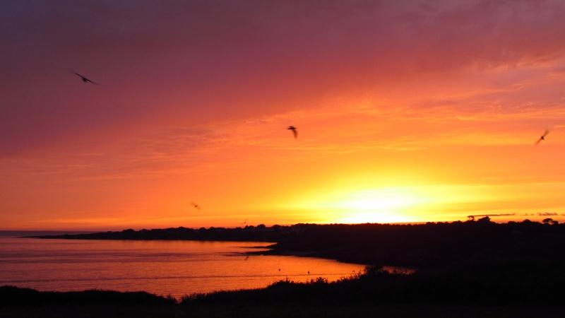 Vos plus beaux couchers de soleil  Img_0510
