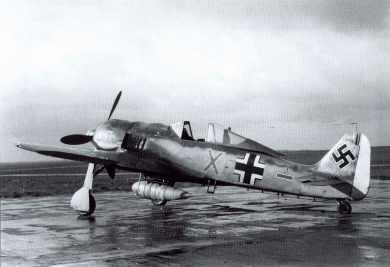 FW190 A8/R8 - 1/48 - Page 5 Fw-19010